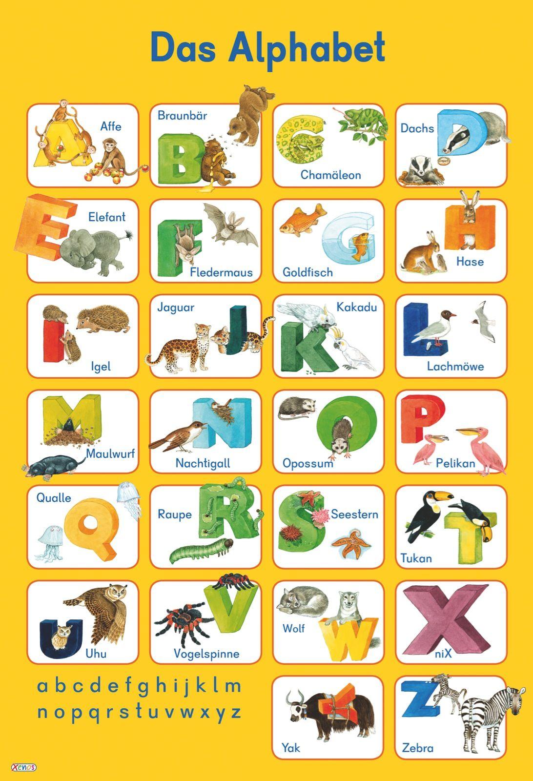 deutsches Tieralphabet   Alphabet   Alphabet, Deutsches ...