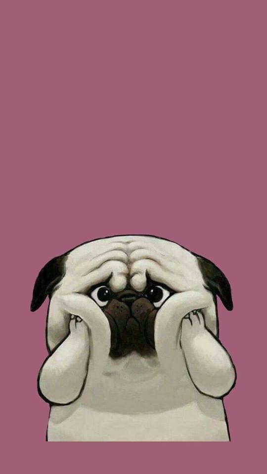 Pin De Alejandra Motta En Wallpapers Tumblr Perro Ilustracion Bonita Humor Divertido Sobre Animales