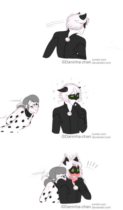 Ladybug and chat noir lemon fanfic meaning