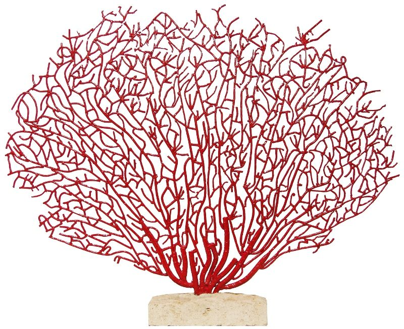 Coral Red Coral On Stone Base Beach Decor Coastal Home