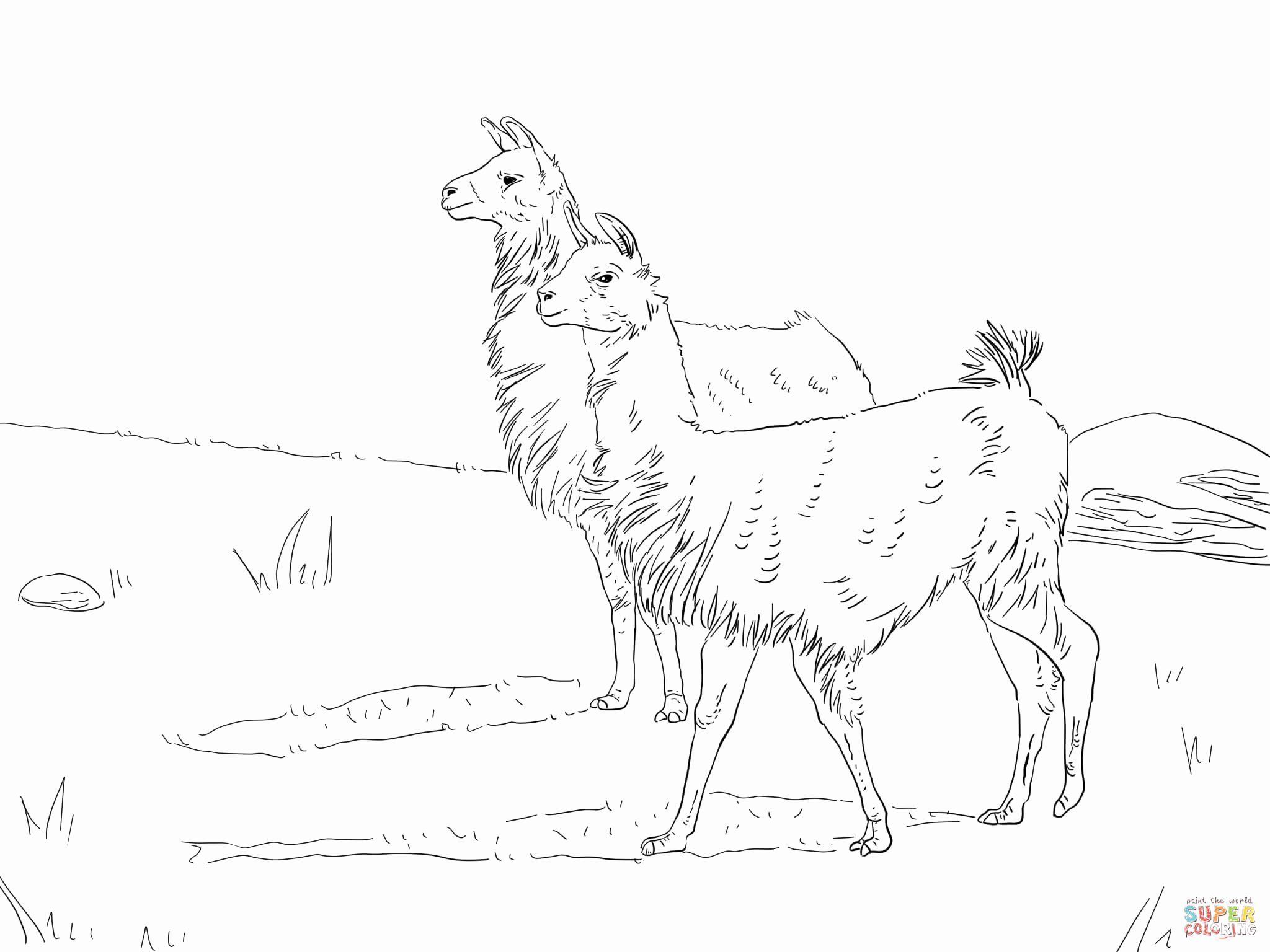 28 Fortnite Llama Coloring Page In 2020 Animal Coloring Pages