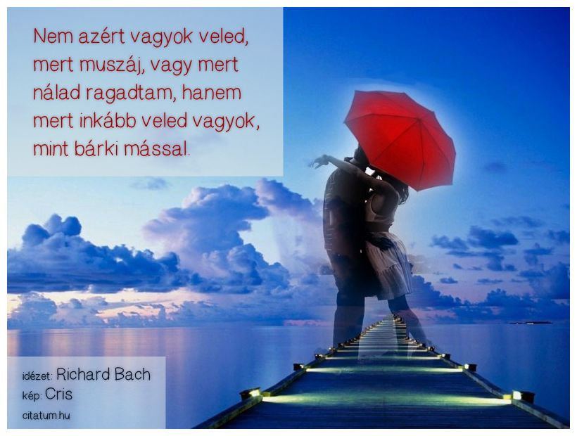 legjobb idézetek 2013 Richard Bach idézet | Love quotes for him, Cute love quotes, Good