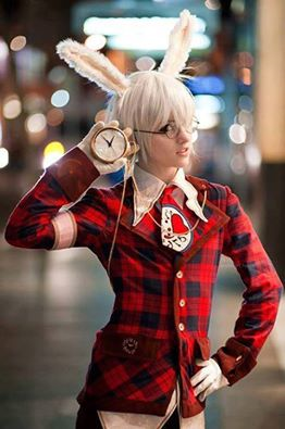 White rabbit cosplay. (country of hearts)