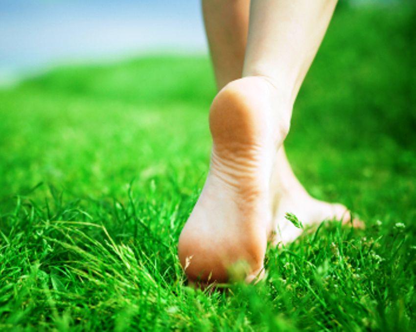 Walking Barefoot Or Grounding Feet In Grass In Water Beach