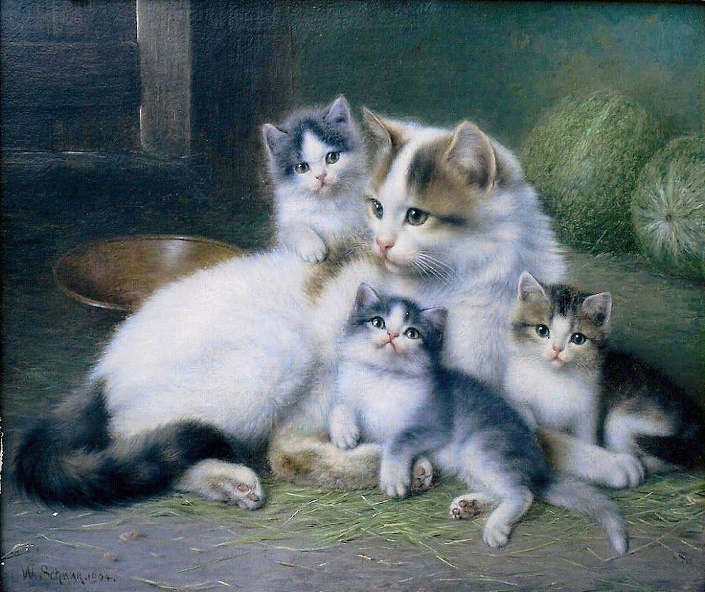 люблю картинки с семью котиками полученные