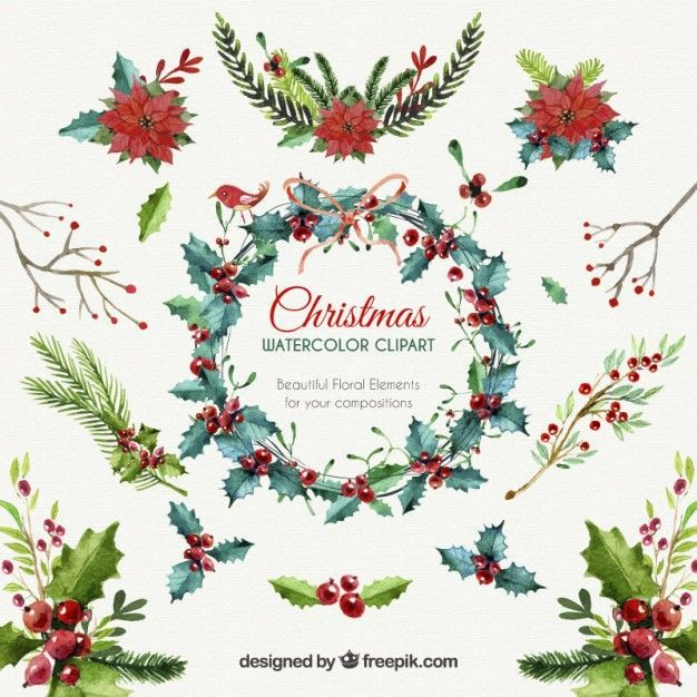 Download Christmas Floral Elements For Free Watercolor Christmas