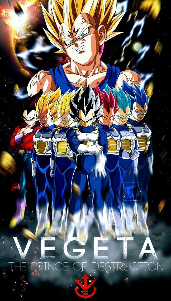 Vegeta Dragon Ball Super ドラゴンボール イラスト