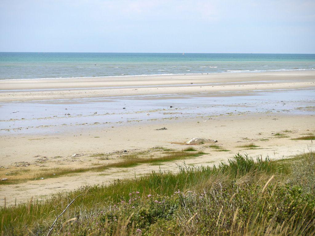 Kilometers on deserted beaches - De grandes étendues de sable