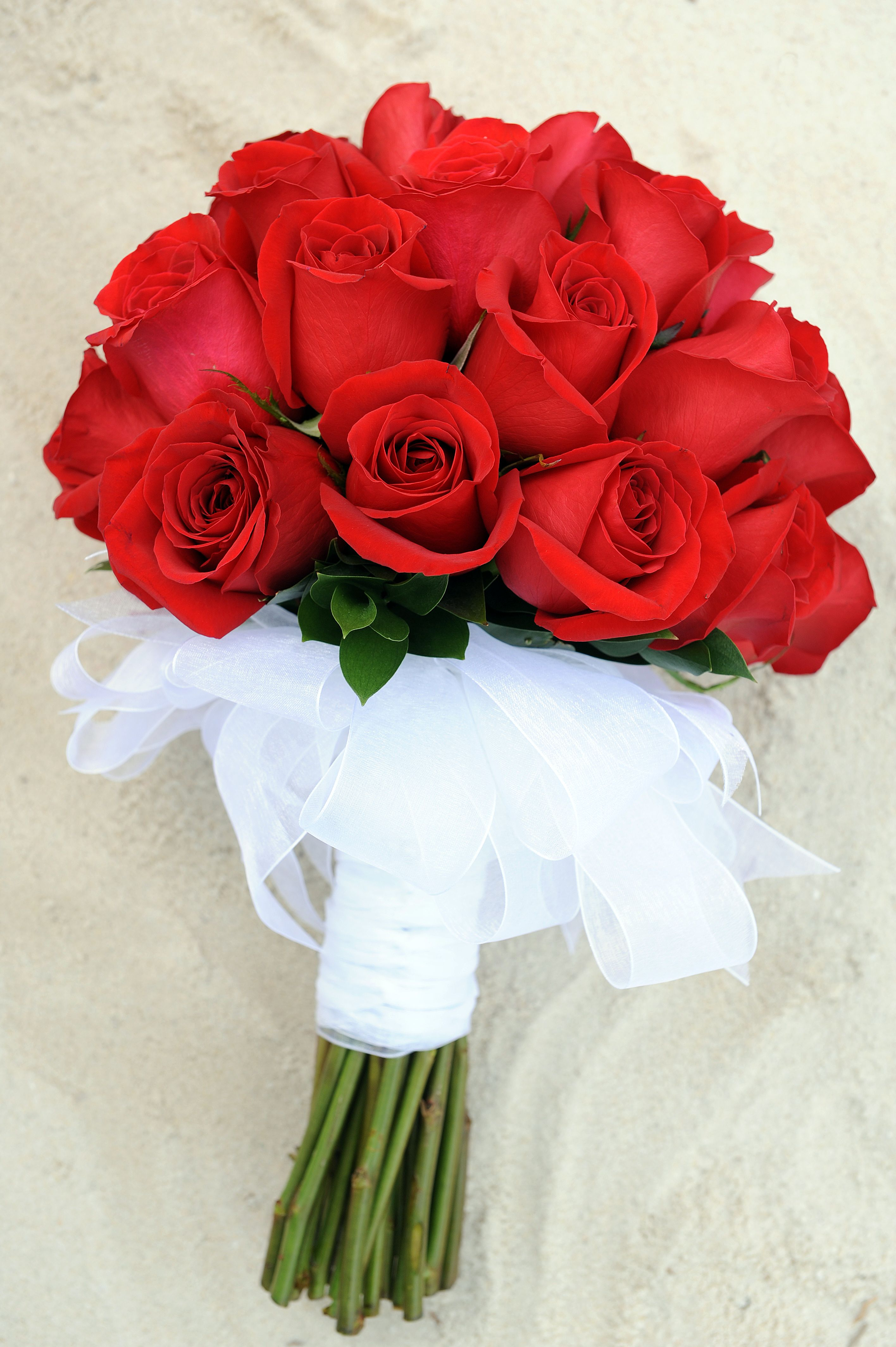 Solid red rose bouquet with white ribbon stem wrapping ...
