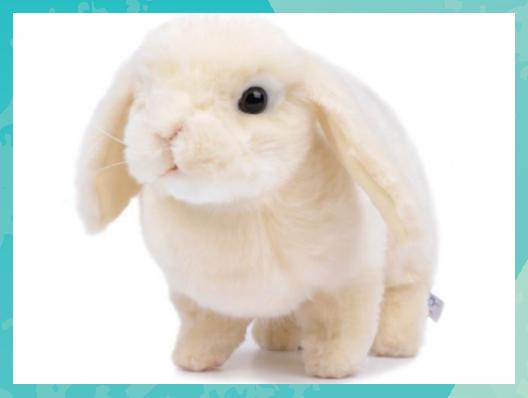 Pin Auf Stuffed Animals