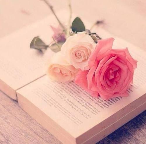 """✿*´¨)* ¸.•*¸.• ✿´¨).• ✿¨)✿ (¸.•´*(¸.•´*(.¸. •*✿Quem espera em Deus não perde tempo... """"Espera no SENHOR, anima-te, e ele fortalecerá o teu coração; espera, pois, no SENHOR.""""  (Salmo 27:14)"""