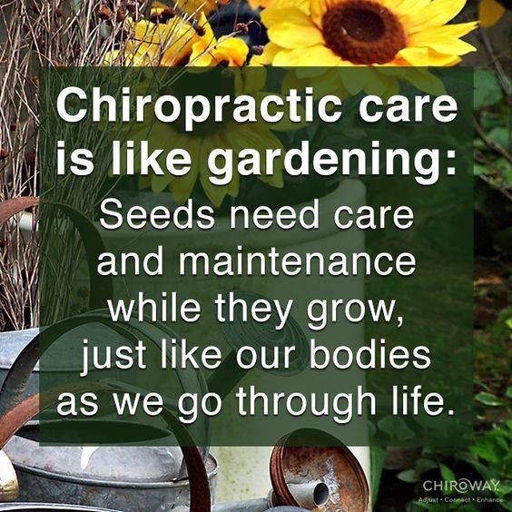 Maintenance and nurture is the key.