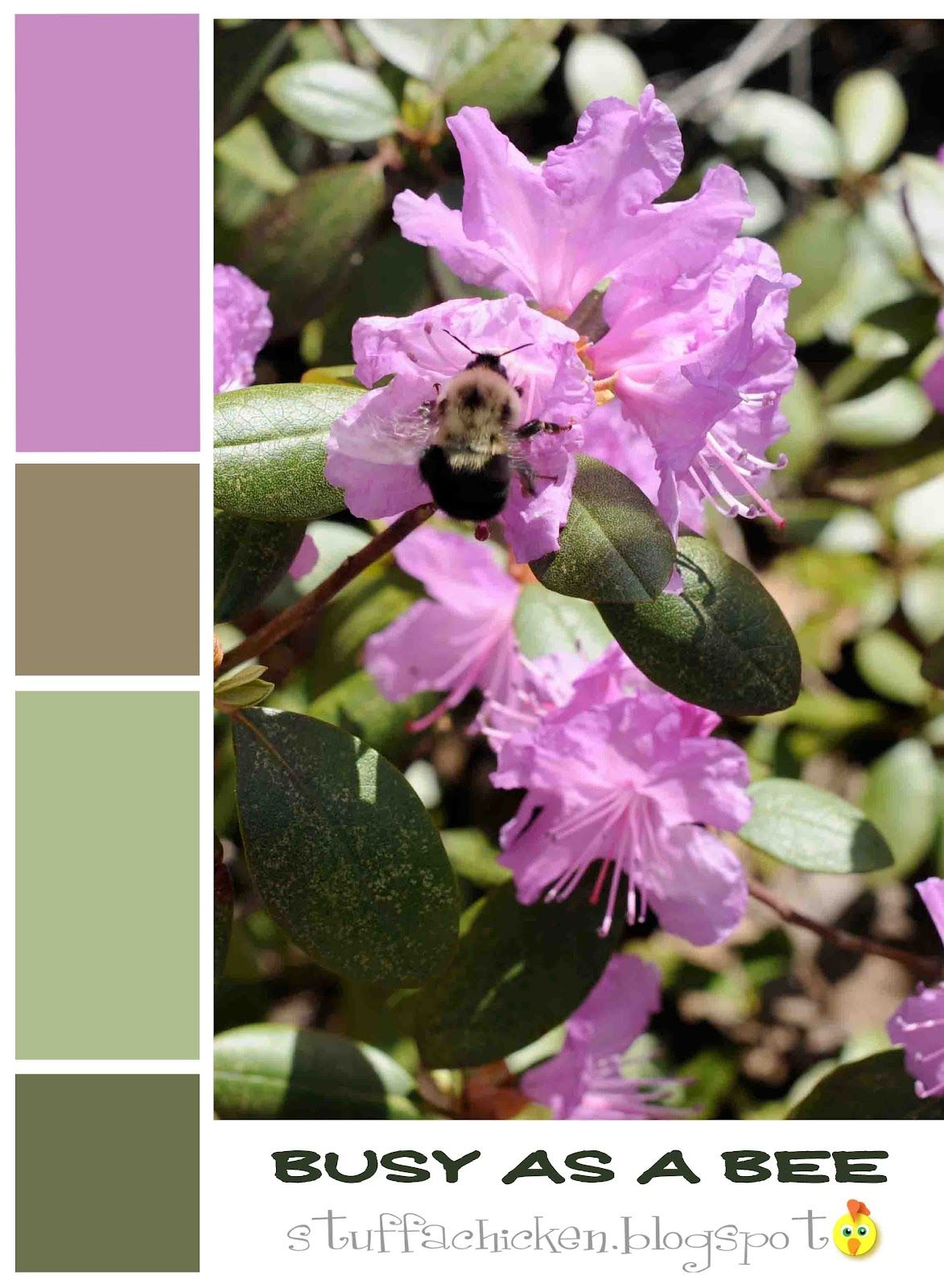 Brown Green And Purple Color Combinations