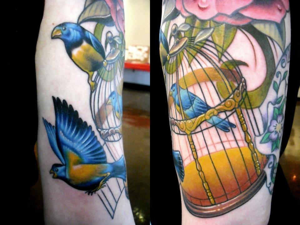 Birds In A Cage Ben Harris Art Machine Productions Philadelphia Pa Art Bird In A Cage Birds