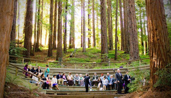 Uc Berkeley Botanical Garden Google Search Wedding Pinterest