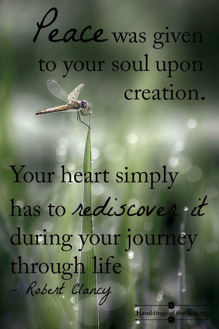Peace was given to your soul upon creation. Your heart simply has to rediscover it during your journey through life #Clancy #peace #soul #life