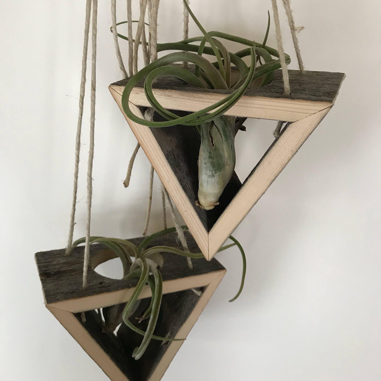 Barnwood Hanging Tillandsia Holder By Jblwoodworks On Etsy Httpswwwetsy