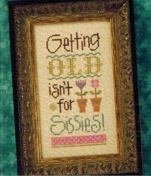 Image result for cross stitch getting old ain't for sissies