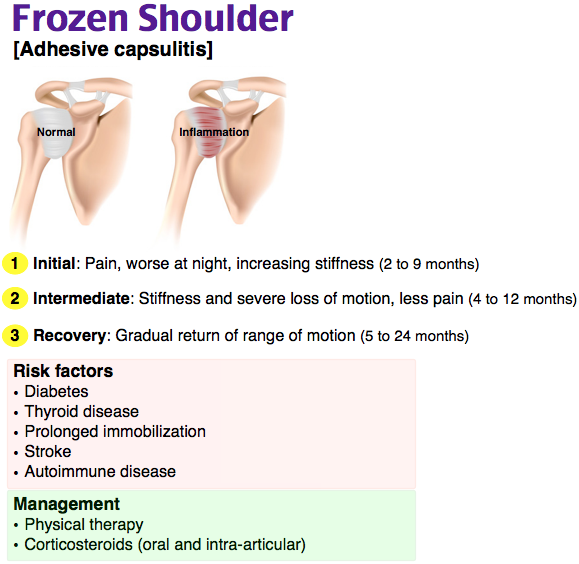 Rosh Review Orthopedic Nursing Medical Anatomy Medical Laboratory Science