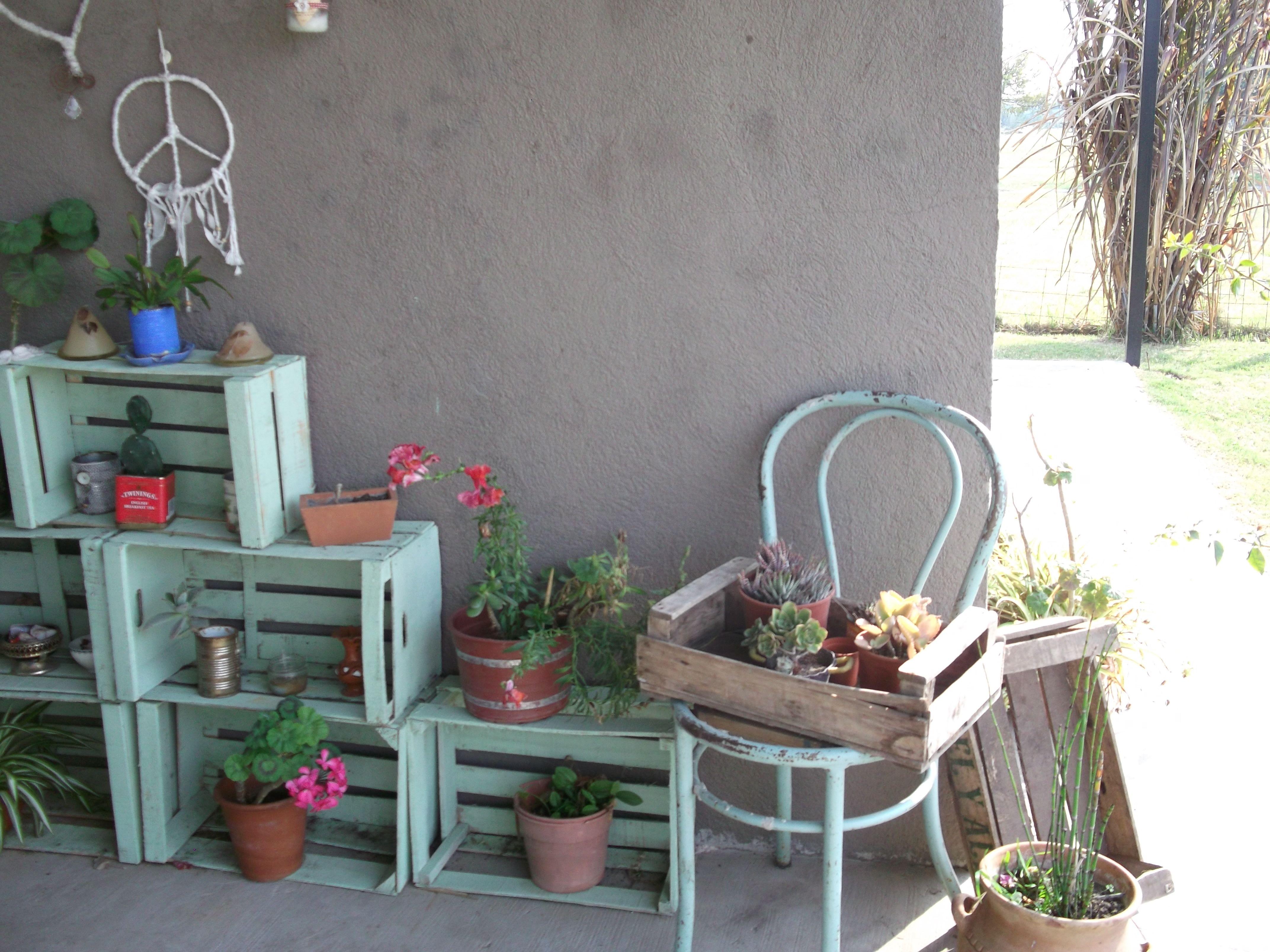 Cajones de verduras macetas y cactus cajones de - Cajones de madera para frutas ...