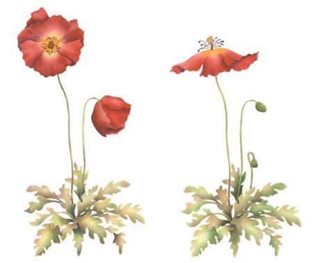 Poppies Wall Stencil by The Mad Stencilist
