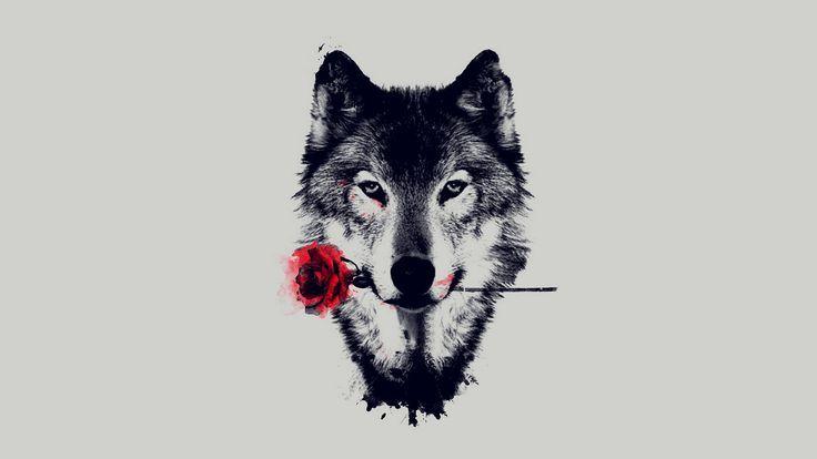 wolf wallpaper - Recherche Google