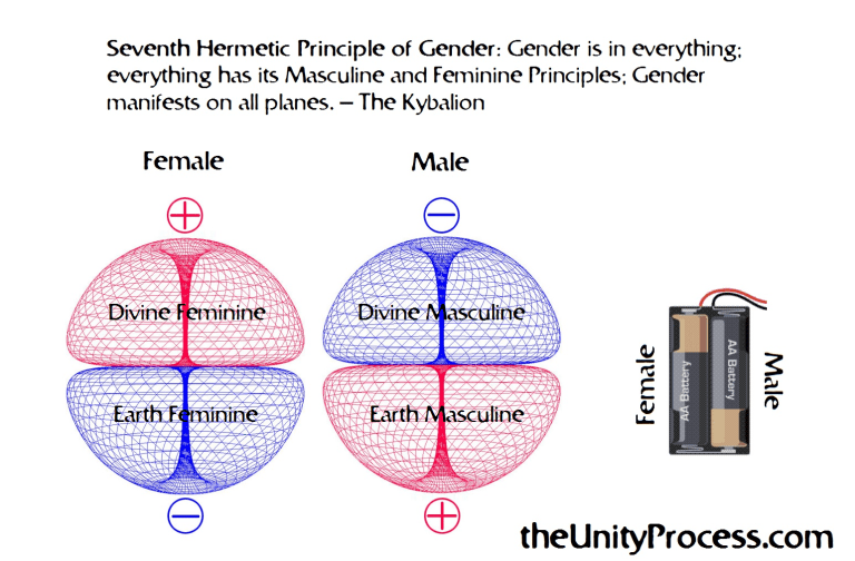 The Seventh Hermetic Principle of Gender | Law of attraction, Principles,  10th quotes