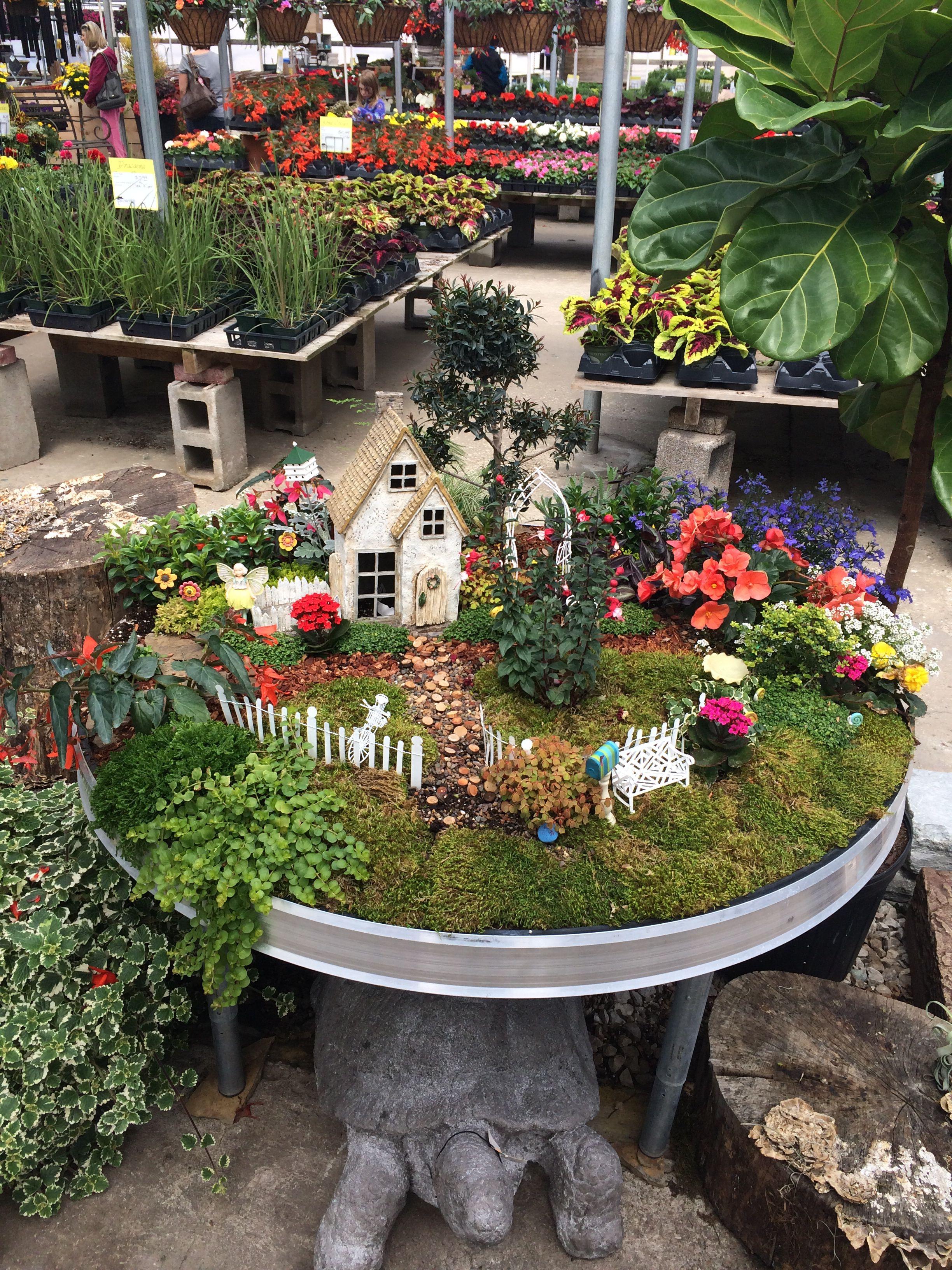 Fairy Garden At Family Tree Nursery Fairy Garden Fairy Garden Houses Faeries Gardens