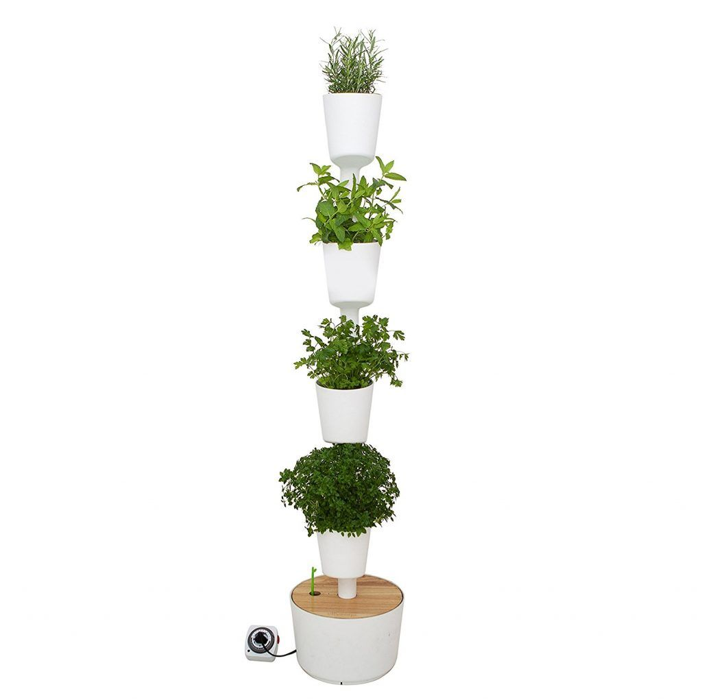 Arredare con le piante Giardinaggio urbano, Idee