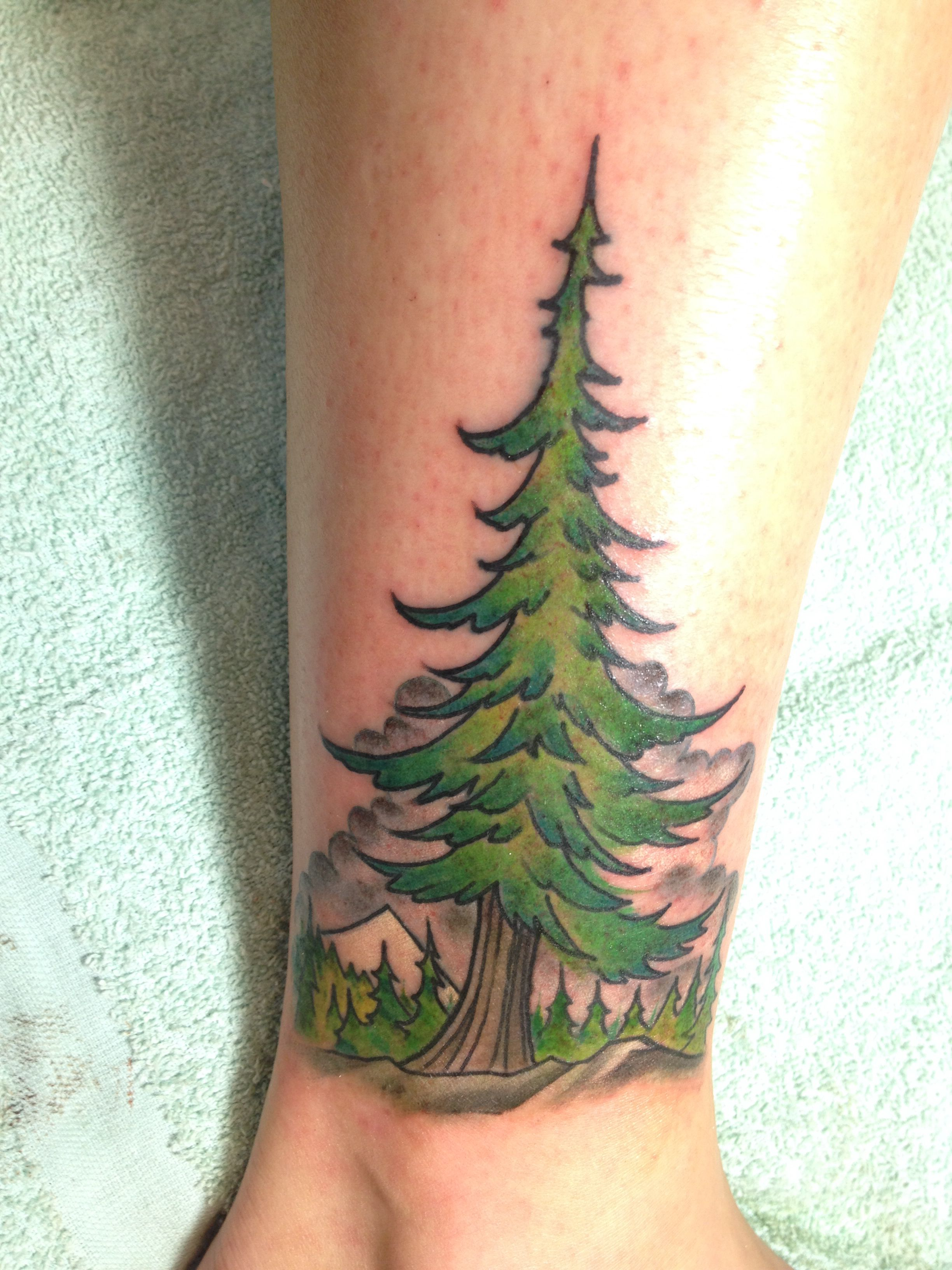 Evergreen Tree Tattoo Love This But Not So Cartoon Like Evergreen Tree Tattoo Tree Tattoo Back Tree Tattoo This is short animation piece that was drawn by hand and then animated using after effects. evergreen tree tattoo love this but