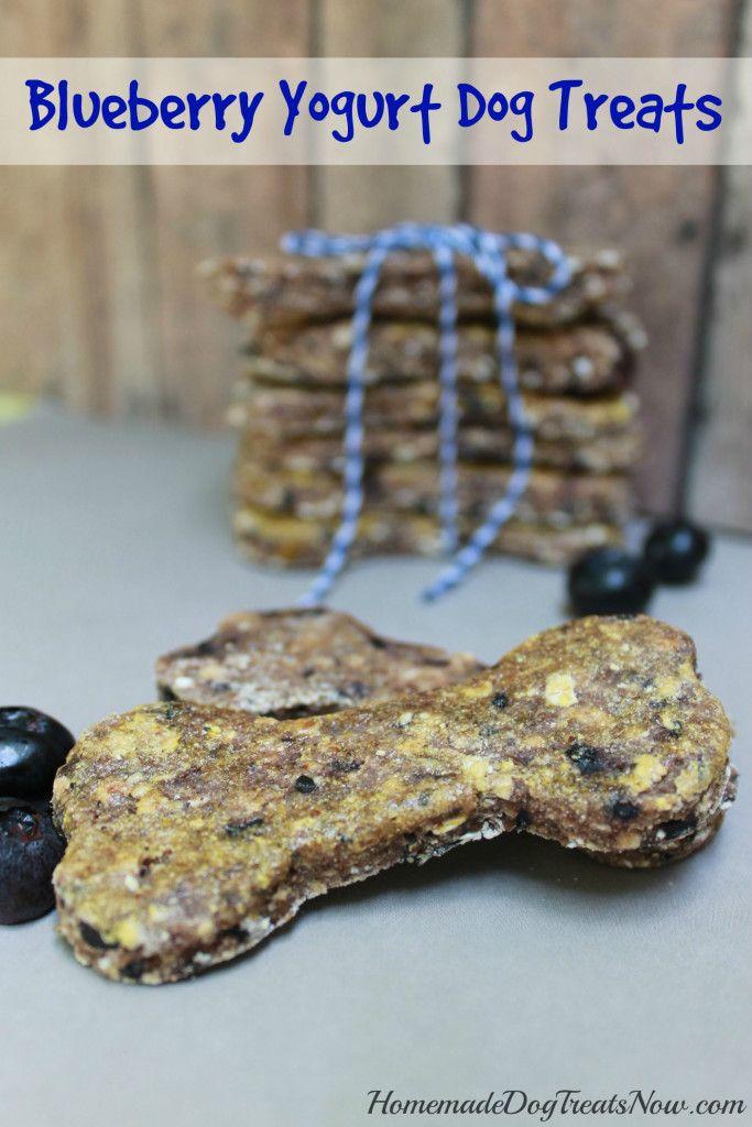Blueberry Dog Treats Pet Treats Recipes Dog Biscuit Recipes