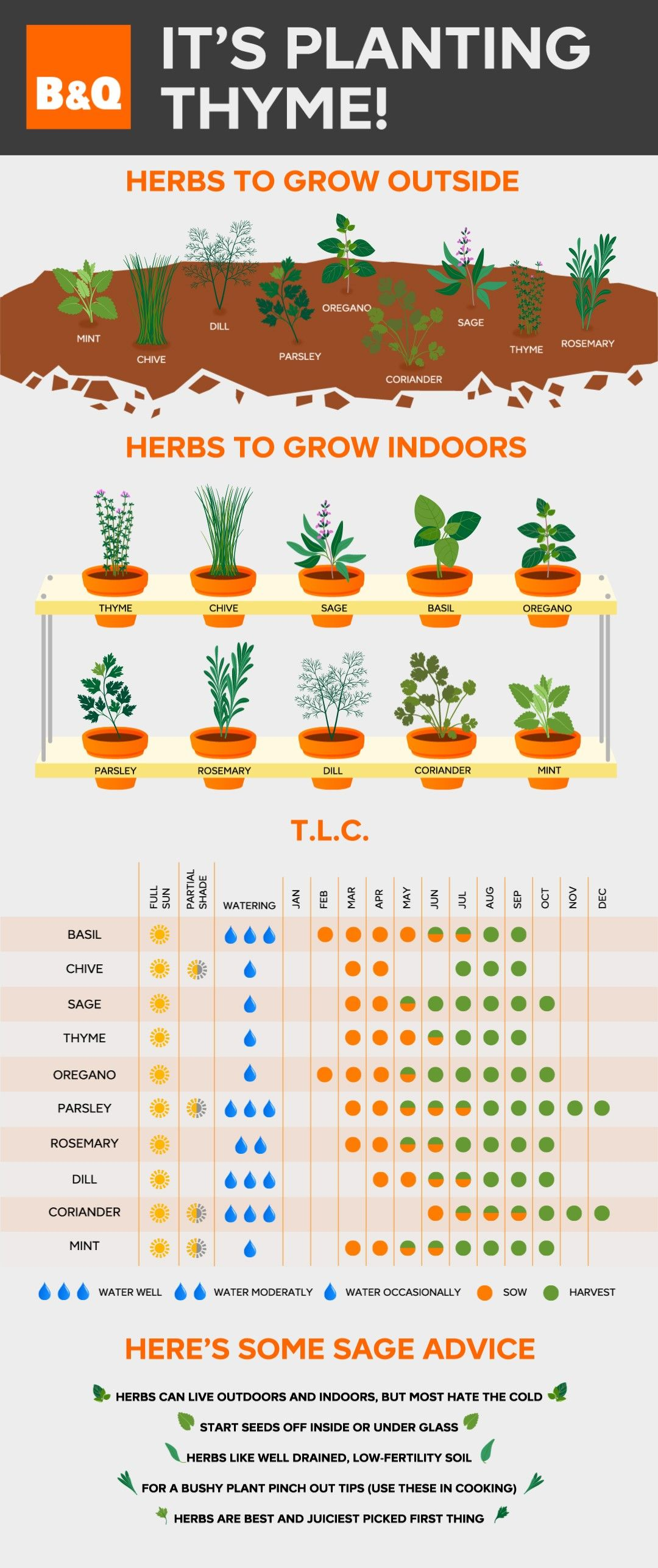 Sage advice in herb care: plan your grown-at-home salads in advance with this handy herb chart that shows you when your plants will flourish. #balconygarden