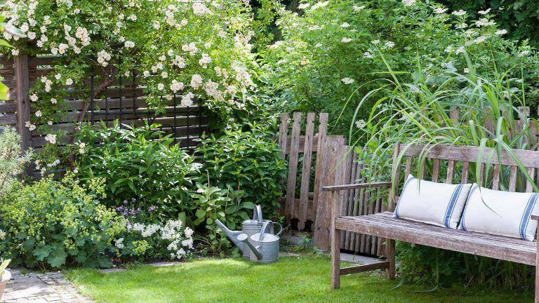 Sichtschutz Mit Pflanzen Balkon Terrasse Garten Otto Garten Gestalten Kleine Garten Gestalten Garten Gestalten Ideen