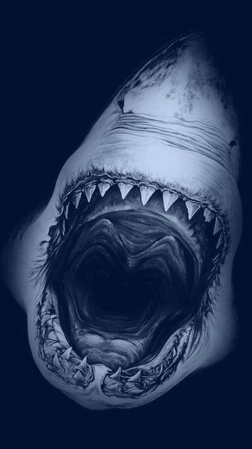 Image Via We Heart It 3d Background Landscape Shark Wallpaper Robert Longo Tubarao Desenho Tatuagem Tubarao