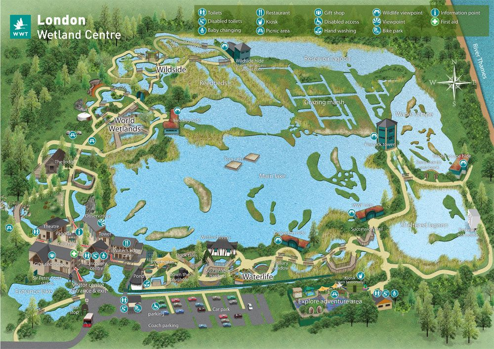 Visit London Wetland Center Is A Wetland Reserve Has Been Voted The Uk S Favourite Nature Reserve Close To The Heart Of The Capita Londres Humedales Viajes