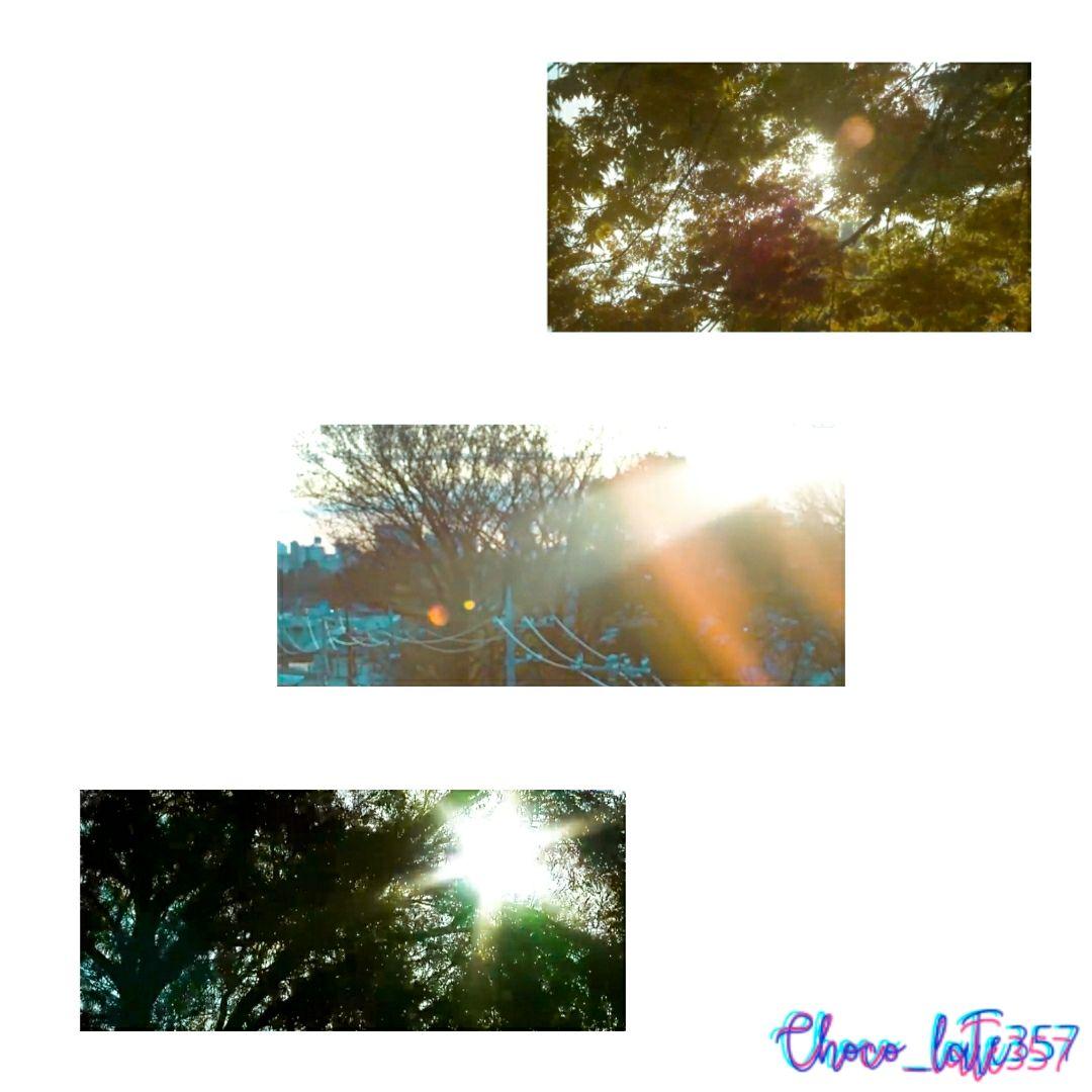 #beautiful #world #shine #goodday