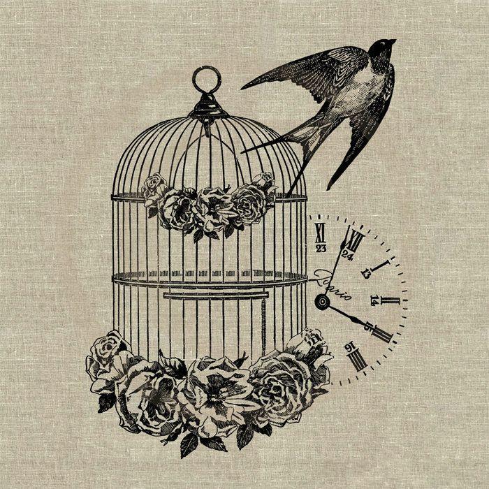Cage Et Envol De L Hirondelle Cage Tattoos Birdcage Tattoo