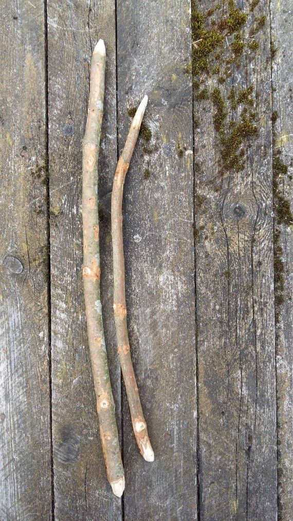 Fir tree Abies wood wand supply wooden sticks natural branch twigs magical tool wicca druid celtic pagan ancient wisdom rustic home decorabies