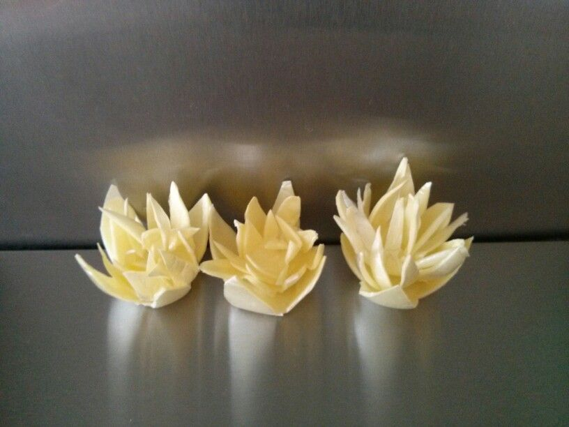 Lotus Flowers Made From A Styrofoam Egg Carton Recycled