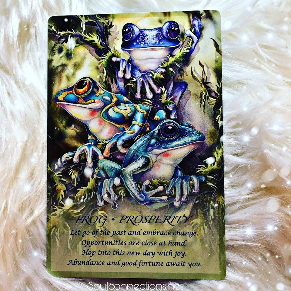 Pin by Soul Connections on Daily Oracle / Tarot card