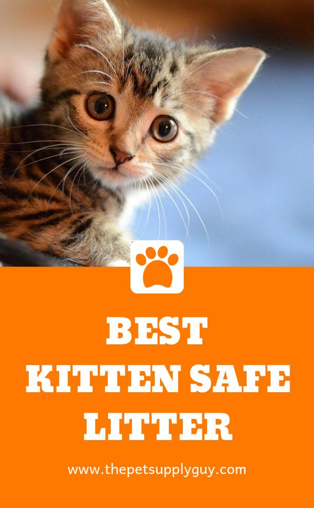 Best Kitty Litter For Kittens Ratings Reviews In 2020 Best Litter For Kittens Cat Litter Litter Training