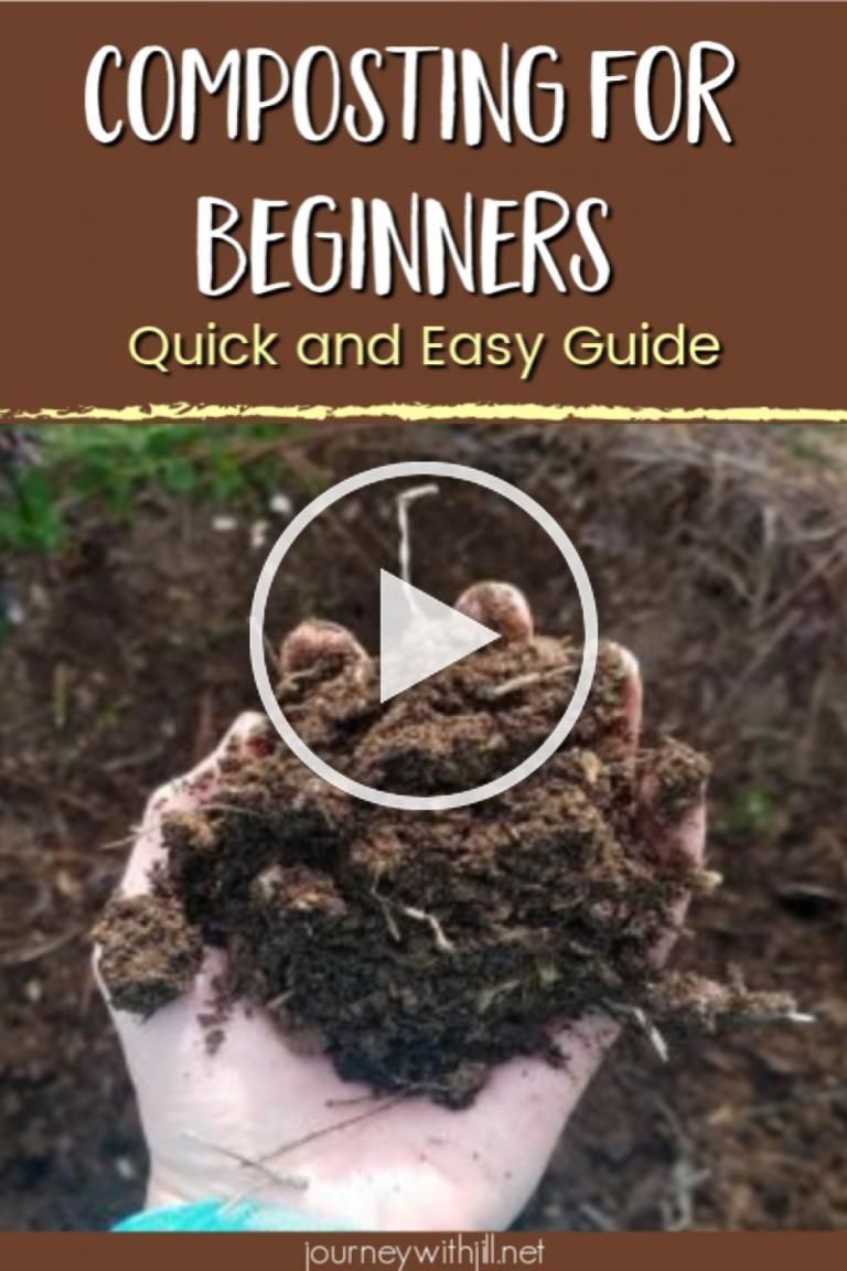 The Quick and Easy Guide to how to make your own compost at home Even beginners can DIY their compost for their garden Learn what it is what it does and why you should st...
