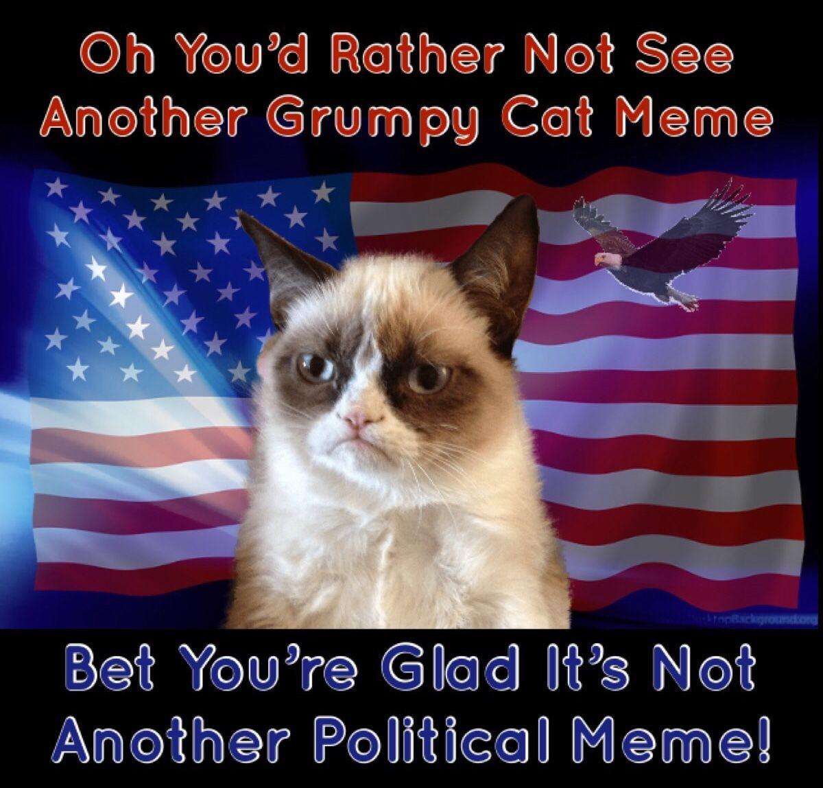 Bet You D Rather See Another Grumpy Cat Meme And Not Another Political Meme Grumpy Cat Grumpy Cat Humor Grumpy Cat Meme