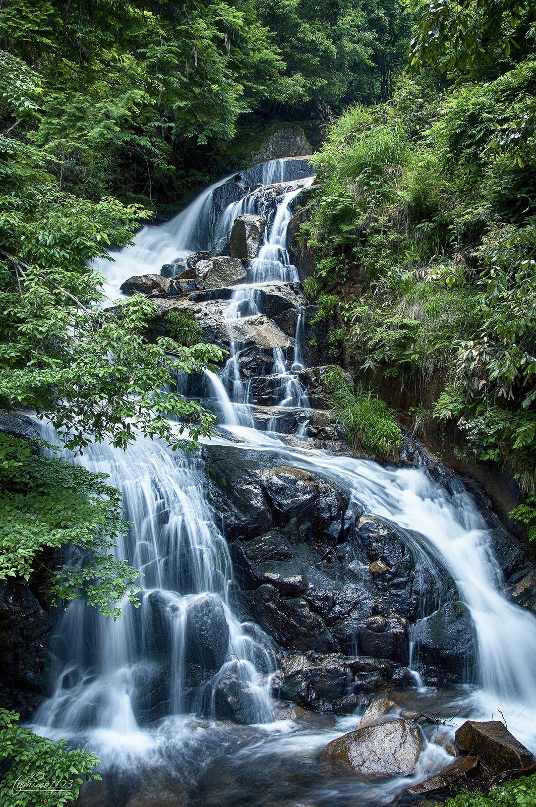 Five Steps Fall (五段の滝) #Japan