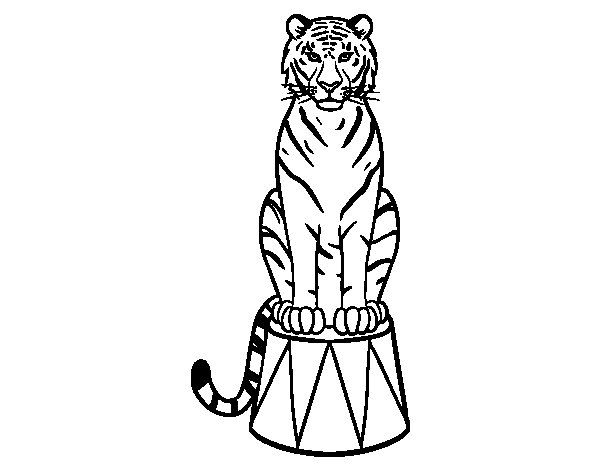 Tiger of circus coloring page circus for Carnival themed coloring pages