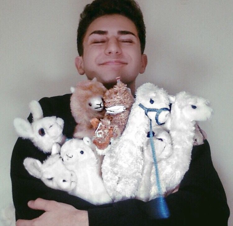 Issa and his llamas <3 | issa | Pinterest | Issa
