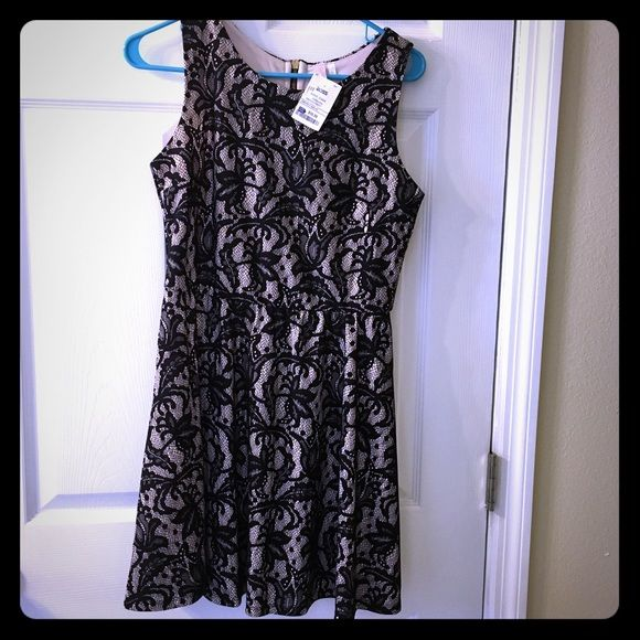 Lace cocktail dress Never worn brand new blacklace/cream cocktail dress Dresses