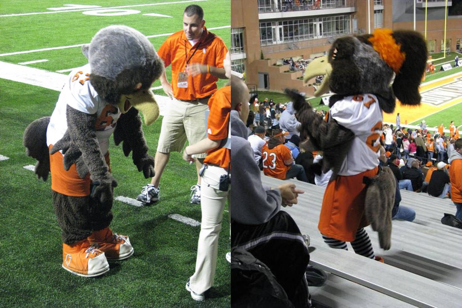 Pin By Unisunn 144 College Football B On Bowling Green State University Falcons Bowling Green State University College Football Mascot
