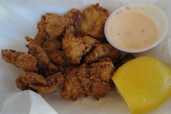 Eat fried gator florida bucket list completed pinterest eat fried gator florida forumfinder Choice Image
