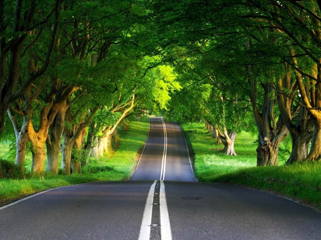 Free 3d Wallpaper Road Download 3d Wallpaper Road Hd Download Download Free 3d Wallpaper Ro Nature Desktop Green Nature Wallpaper Nature Desktop Wallpaper
